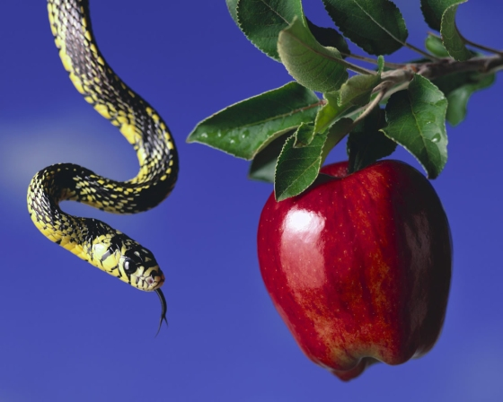 snakeandapple