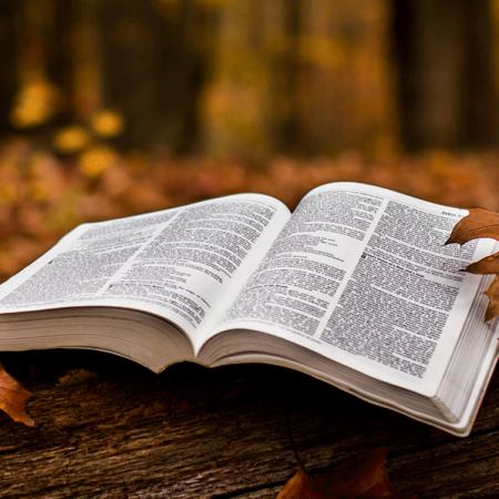 Bible-Fall-1600x600-e1435092695202-450x450