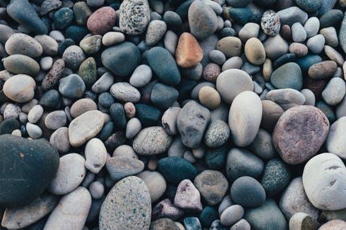pexels-photo-1029604